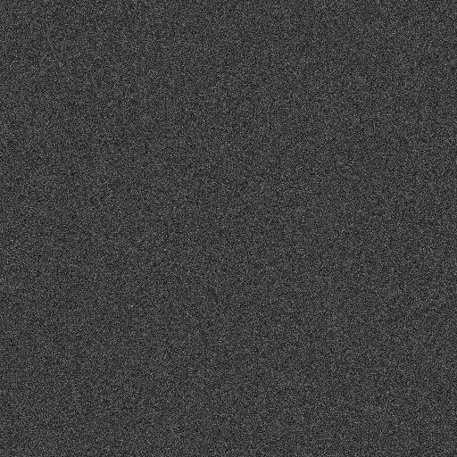 White.noise.b.w